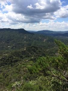 山頂から南の眺め。中景は笹間ヶ岳。遠くに見えている山はなんだろう?
