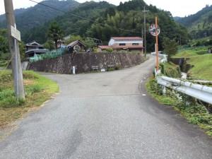右が松尾山、左が白髪岳への道。