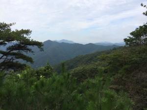 尾根合流点から西の眺望。