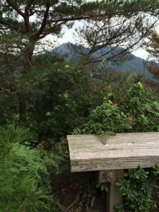 尾根合流点のベンチと東に松尾山。