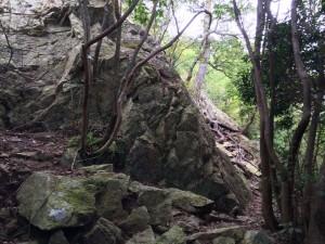 岩場が現れる。ここはまず右に巻いていく。