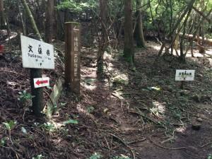 鐘掛の辻からの道(右)と、松尾山からまっすぐ下りてくる尾根道(左)の合流点。