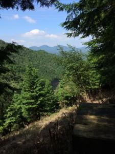 伐採地から北側の眺め。
