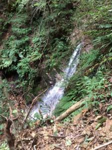 巻き道の途中からの赤子滝。