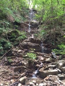 階段状の滝になって入ってくる支流。