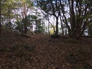 小和田山の山頂。
