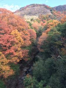 橋から見下ろす惣川。前方は採石場。