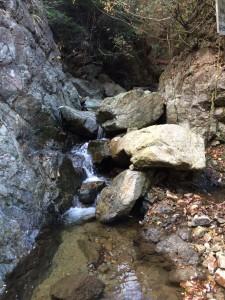 惣川谷支流の入り口。