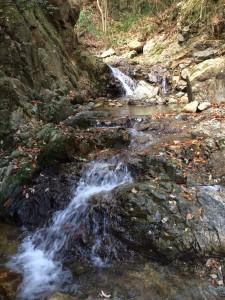 最初の小滝の連続。