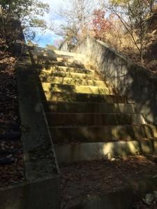 階段状の水路。段差は大きく、明らかに歩行用ではない。