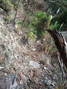 かなり急な斜面をトラバースする巻道。
