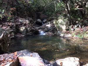 小さな滝に大きな淵。右からへつって越える。