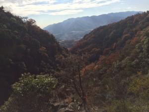 巻道の上の岩峰からの眺望。