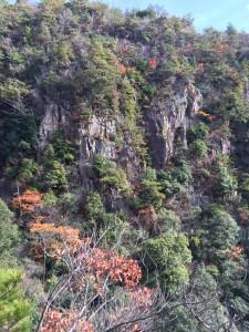 対岸の岩壁。