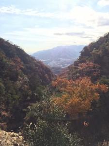 造成された道の上から惣川谷支流を振り返る。