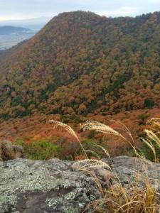 赤神山山頂から箕作山、小脇山の南斜面を眺める。