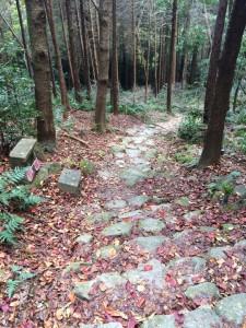 石段の道が続く。