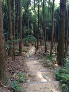 石段が終わって竹林に下りる。