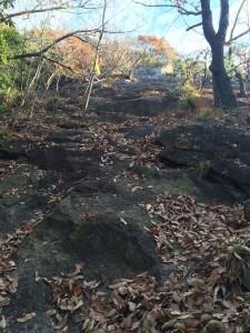 最初の岩盤登り。