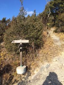 中所登山口からの道との合流点。