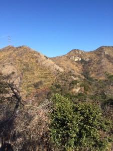 百間岩が見えてきた。その右に続くのが鷹ノ巣山。