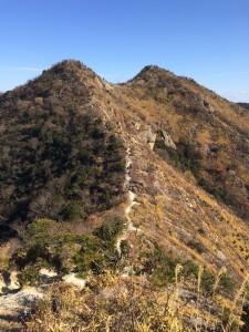 鷹ノ巣山の双耳峰。ちょっと八ヶ岳の赤岳っぽく見えないこともない。