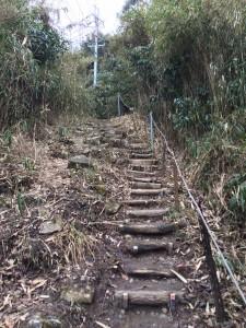 最後の階段。いきなり電線、鉄塔…。