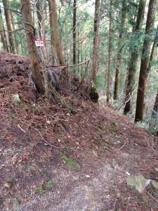 井足岳への道の入り口。