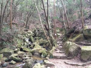 「月の輪滝コース」入り口付近。