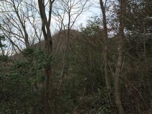 交野山が姿を見せる。