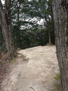 分岐。「交野山山頂」の標識は左下を向いている。