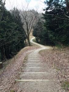 国見山への道。