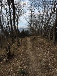 国見山からの下り道。
