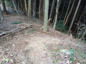 道はここで右の谷に下りていく。でも左に尾根通しに進んでみた。