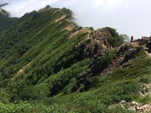 切通岩の上から歩いてきた道を振り返る。