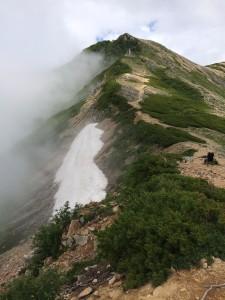 東大天井岳北東の雪田。