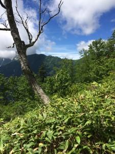 槍ヶ岳が見える。