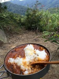 欧風角煮カレー。