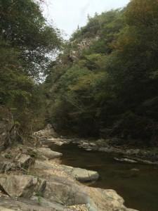 この辺は少し穏やかな渓相。