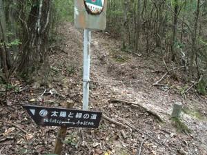 正面奥から出てきた。右が平田配水池、左が鎌倉峡出合。