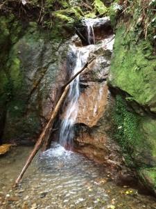 2段4mの滝。右から巻く。