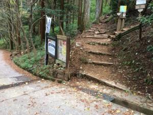 真っ直ぐが「いわわきの道」、すぐに右に登っている階段道が「きゅうざかの道」。